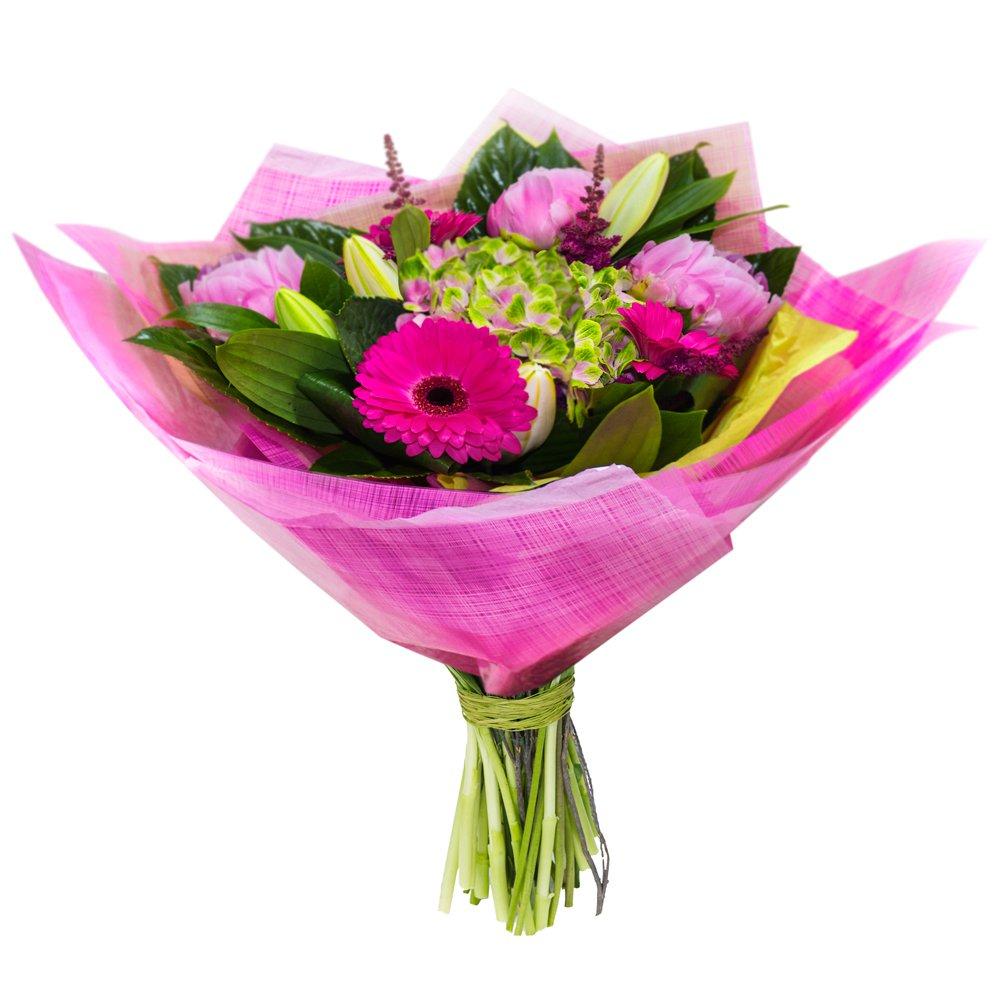 Bunch judys florist cairns flowers online or call 07 4032 3919 dreamland izmirmasajfo